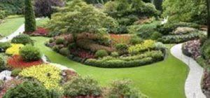 Progettazione giardini e aree verdi a Trigoria